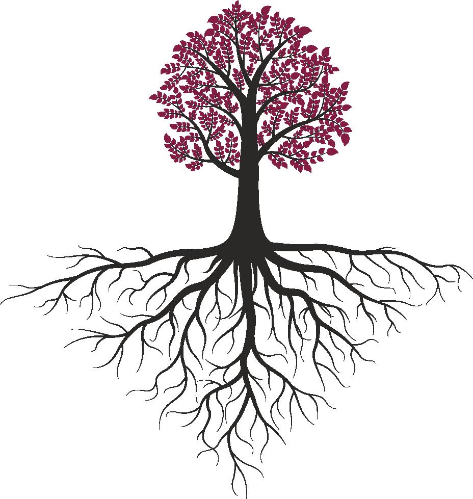 tree-root4